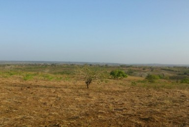 Mavoko Land for Sale